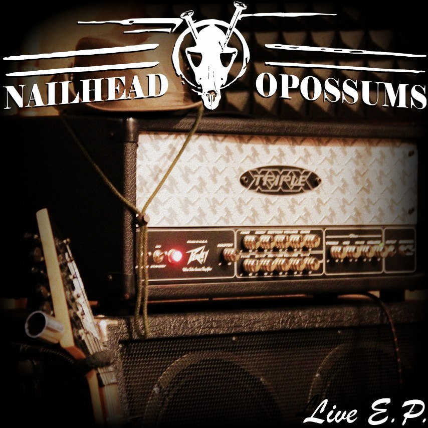 NAILHEAD OPOSSUMS - Live EP (2016)